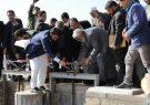دو پروژه آبیاری در هرات به بهرهبرداری رسید