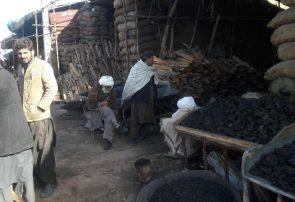 چوب فروشان هرات نگرانند/بازار فروش چوب خیلی کساد شده است