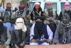 طالبان هرات در بین خود مشکل دارند/ ۳۰ طالب کشته و زخمی شدند