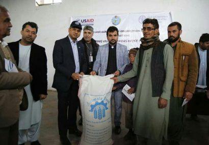 توزیع مواد خوراکه حیوانی و مواد زراعتی به ۱۲۰۰ خانواده متضرر از خشکسالی در هرات