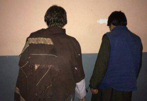 دو سارق در هرات به دام پولیس افتادند