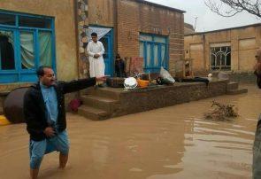 بارش باران در هرات؛ آب مهمان خانهها شد/شهرداری خودش را مقصر نمیداند