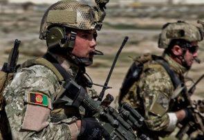 طالبان بادغیس غافلگیر یک عملیات کماندویی شدند/۱۰ کشته و سه بازداشتی