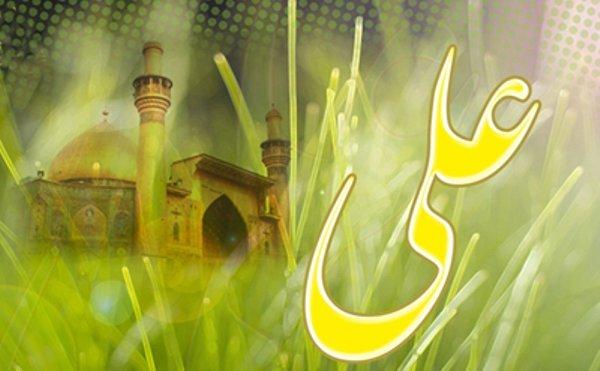 حضرت علی(ع) در دینداری و سیاست مردی کامل و ممتاز بود