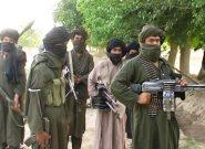 طالبان در بادغیس هیچ دولتی نمیبینند