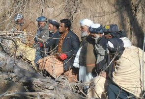 آموزش ۱۶۰ تن از باغداران انگور در هرات