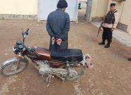 بازداشت یک سارق در هرات