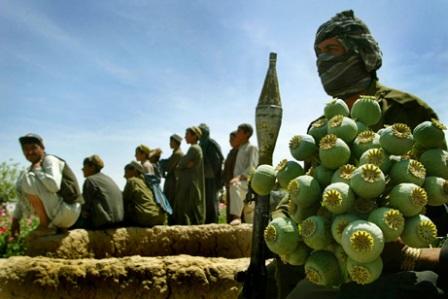 گلیم عایداتی طالبان را جمع میکنیم