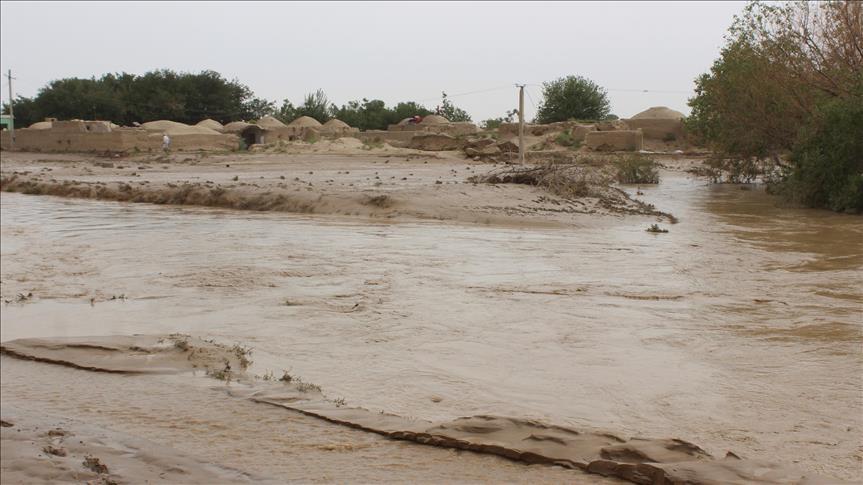 بارش سیل آسایِ باران جان دو باشندۀ هرات را گرفت