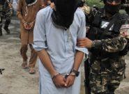 یک عضو استخباراتی طالبان فراه به چنگ استخبارات دولت افتاد