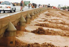 سیلاب هرات پنج کشته و ۱۷ ناپدید برجای گذاشته است