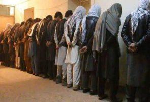 ۸۰ درصد عاملان جرایم جنایی یک سال اخیر در هرات بازداشت شدهاند