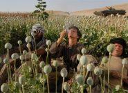 بکواه فراه، معدن مواد مخدر افغانستان/برداشت تریاک دو برابر شده است