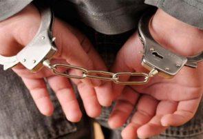 یک قاچاقچی مواد مخدر به دام پولیس هرات افتاد