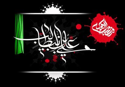 حضرت علی(ع) در حساسترین و خطرناکترین وضعیت از پیامبر(ص) دفاع کرد