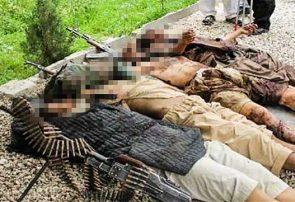 درگیریها در هرات چهار عضو طالبان را از پای درآورد
