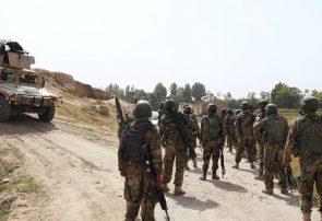 طالبان سه عضو کلیدی خود را در هرات از دست دادند
