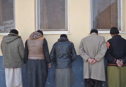 پنج تن از سارقان هرات به چنگ پولیس افتادند