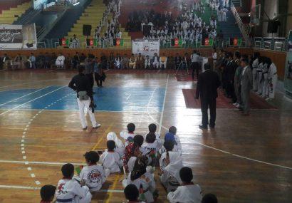 فدراسیون تکواندوی هرات از مدالآوران رقابتهای ملی و بین المللی تقدیر کرد