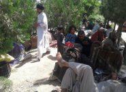 معتادان پای منارههای هرات داد مردم محل را درآوردهاند