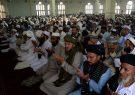 چاره مشکلات جنگ نیست، طالبان صلح را قبول کنند