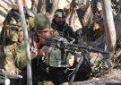 از ابتدای سال ۵۰ مخالف مسلح دولت توسط نیروهای امنیتی هرات از پای درآمدند