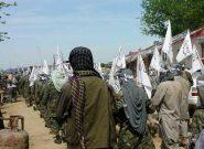 وحشت سراسر غور را فراگرفته/ طالبان به سرعت در حال تسخیر مناطق است