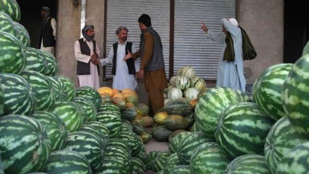 بازار آشفته میوه در امسال، کشاورز فراهی را به فکر کشت تریاک میاندازد