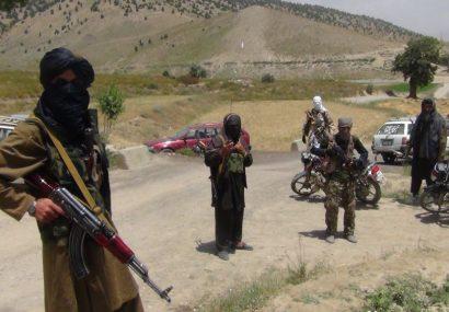 باخت طالبان در شیندند هرات با شش کشته و ۱۳ زخمی