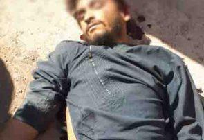 نبرد میان دو شاخه از طالبان شیندند هرات دو کشته از طرفین گرفت