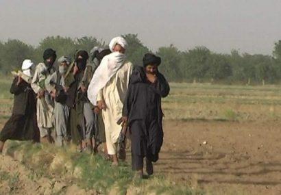 طالبان غور جان یک جوان را به علت ندادن عشر و زکات گرفتند