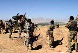 طالبان در پشتون زرغون هرات ۱۰ کشته و ۱۵ زخمی دادند