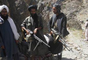 طالبان از حملات هوایی بادغیس وحشت کردهاند