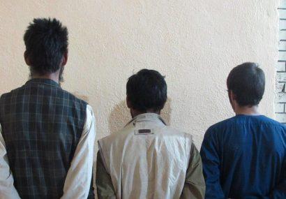 سه تن هنگام دزدی از یک خانه به چنگ پولیس هرات افتادند