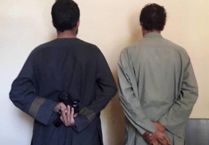 پولیس هرات مانع یک انفجار شد و دو مرد مسلح را دستگیر کرد
