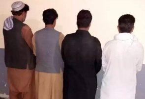 چهار راننده و مسئول یک شرکت مسافربری در هرات دستگیر شدند