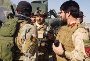 نقشه طالبان فراه شکست خورد/۳۵ کشته و ۲۵ زخمی آمارهای اولیه تلفات طالبان