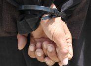 حرفهای ترین دزد منازل مردم فراه به چنگ پولیس افتاد