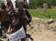 به پیوستن گروه یا افراد طالبان به دولت مشکوکیم