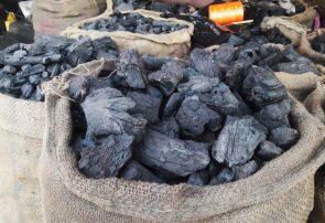 هوای سرد و بازار گرم سوخت زمستانی در هرات