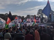 هواداران تیم ثبات و همگرایی در هرات علیه تقلب انتخاباتی شعار دادند