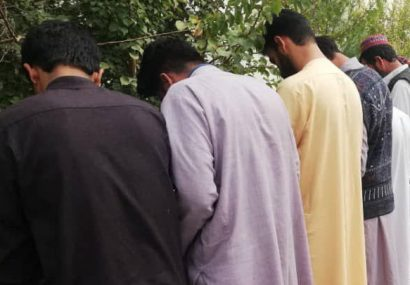 پنج قاچاقچی حرفهای مواد مخدر به چنگ پولیس هرات افتادند