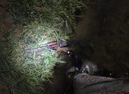شب ناآرام هرات/ تیراندازی و انفجار سه کشته و هفت زخمی به جا گذاشت