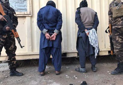 امنیت ملی هرات از یک رویداد تروریستی جلوگیری کرد