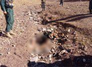 یک عضو طالبان در هرات کشته شد