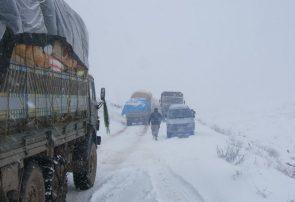 برف زمستانی مسیر فیروزکوه و ولسوالیهای غور را بست