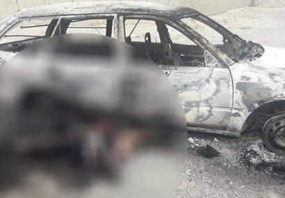 حمله هوایی پنج عضو طالبان را در هرات کشت