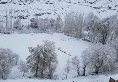 بارش برف راههای چند ولایت مرکزی را مسدود کرده است