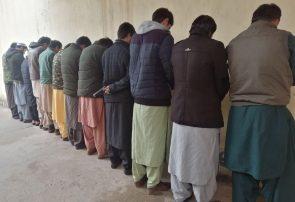 ۱۴ مظنون جرایم در هرات دستگیر شدند