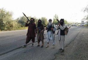 طالبان نقشی در نا امنیهای اخیر شاهراه اسلام قلعه ندارند